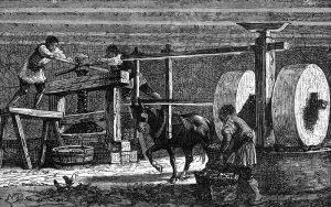 Grška oljarna 1879